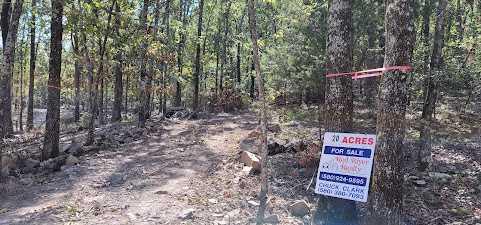 20 ac treed, mountain lot, camp, recreational | Rock Creek Ranch LeFlore, OK 74942 1