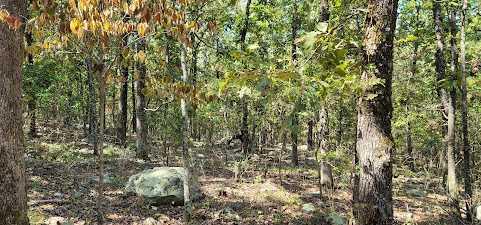 20 ac treed, mountain lot, camp, recreational | Rock Creek Ranch LeFlore, OK 74942 4
