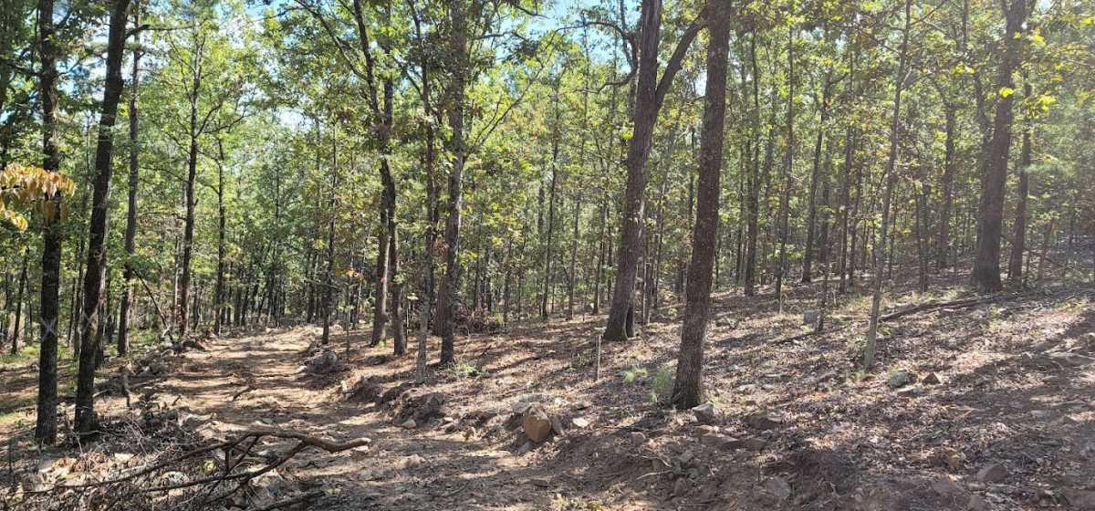 20 ac treed, mountain lot, camp, recreational | Rock Creek Ranch LeFlore, OK 74942 5