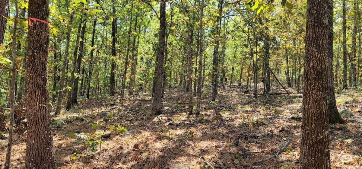 20 ac treed, mountain lot, camp, recreational | Rock Creek Ranch LeFlore, OK 74942 8