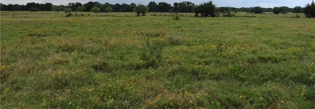Sold Property | LOT 32 VZ CR 3831  Wills Point, TX 75169 0