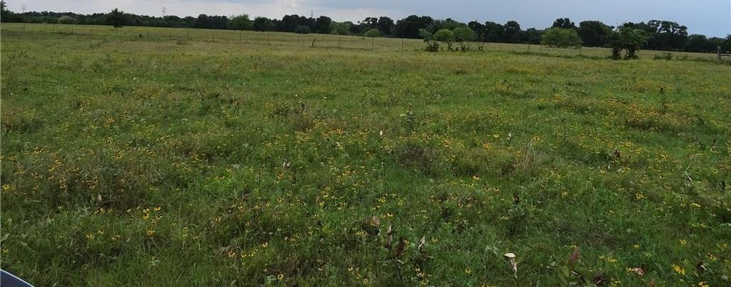 Sold Property | LOT 32 VZ CR 3831  Wills Point, TX 75169 1