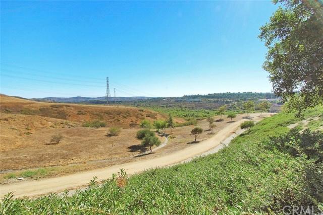 Closed | 76 Orange Blossom Circle Ladera Ranch, CA 92694 29