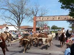 Sold Property | 1909 Highlander Court Fort Worth, Texas 76120 12
