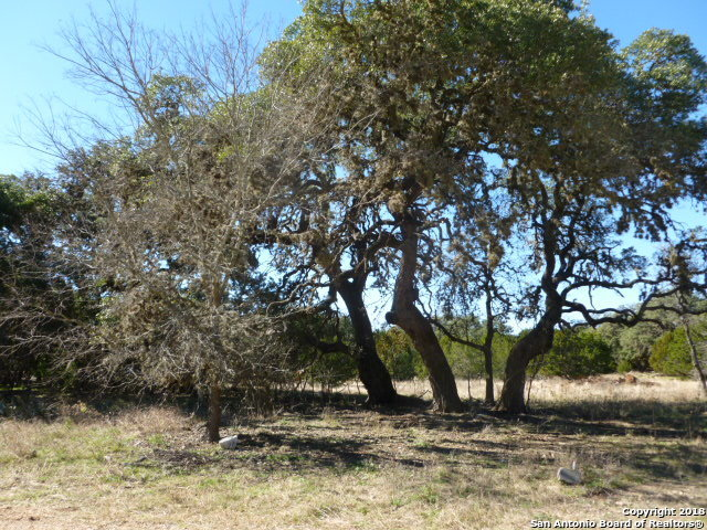 Active | LOT 14 SADDLE HORN Bandera, TX 78003 2