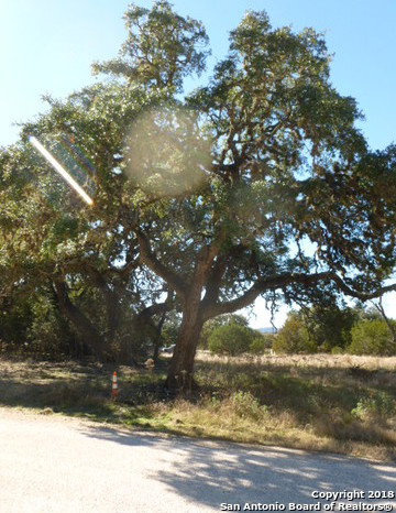 Active | LOT 14 SADDLE HORN Bandera, TX 78003 3
