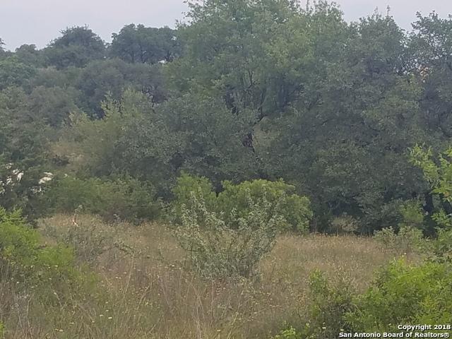 Active | 23203 Stallion Ridge San Antonio, TX 78255 5