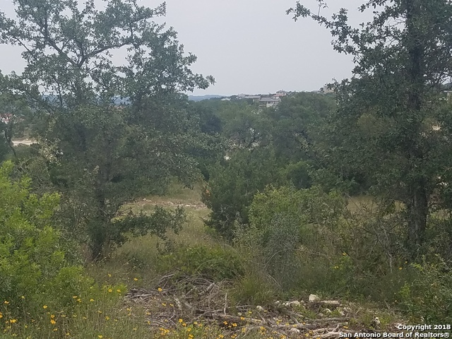 Active | 23203 Stallion Ridge San Antonio, TX 78255 7