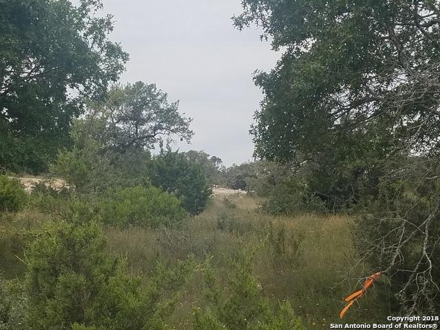Active | 23203 Stallion Ridge San Antonio, TX 78255 9