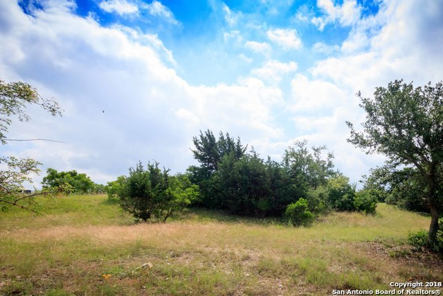Active | 206 PARADISE POINT DR  Boerne, TX 78006 9