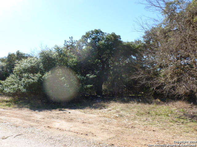 Active | LOT 15 SADDLE HORN Bandera, TX 78003 2
