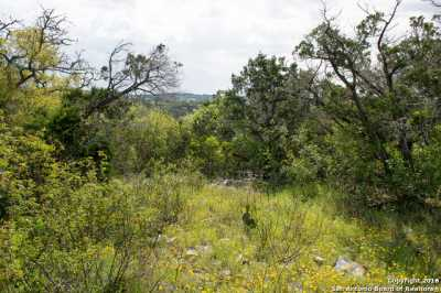 Active | LOT 70 COUNTY ROAD 273  Mico, TX 78056 9