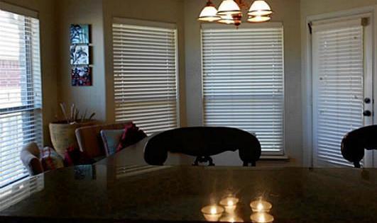 Sold Property | 313 Fountain View Lane Josephine, Texas 75173 7