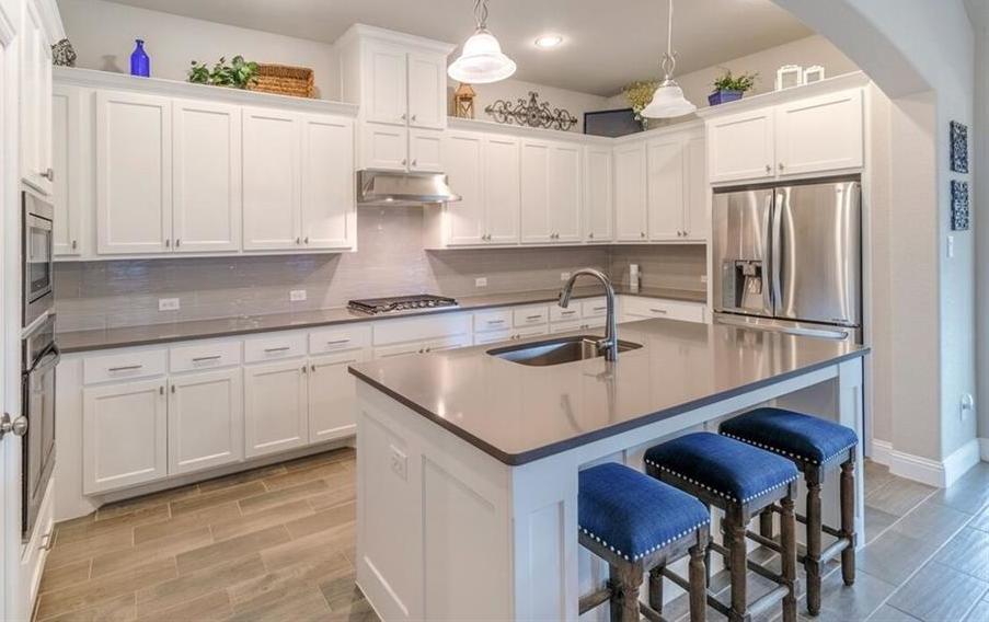 Sold Property | 10009 Denali Drive Little Elm, Texas 75068 3