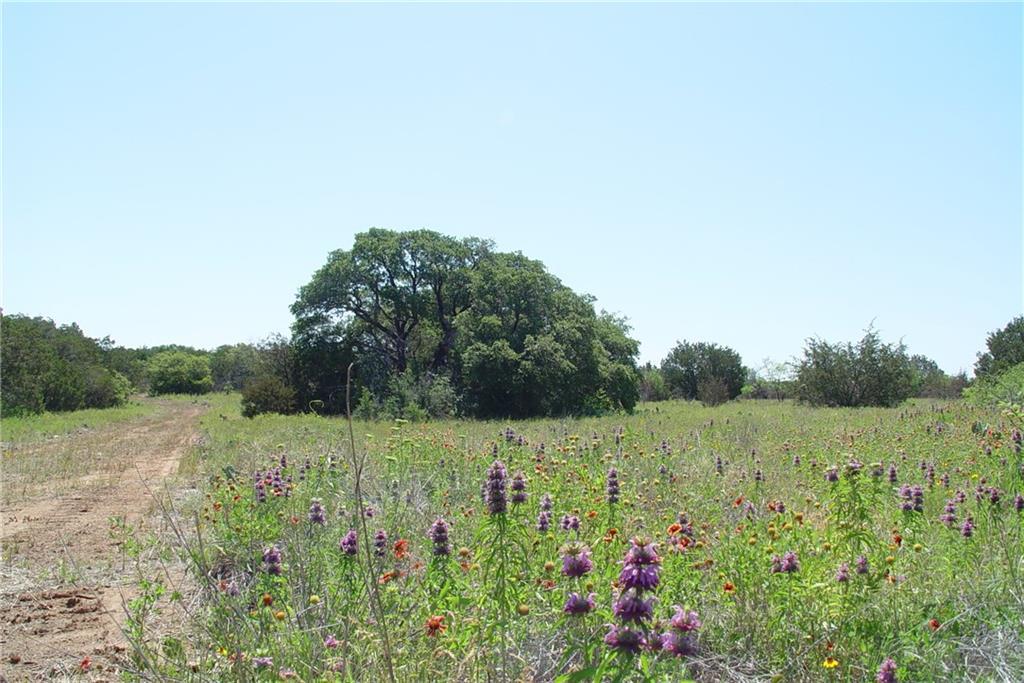 Sold Property | 5439 FM 1148  #B Graham, Texas 76450 9
