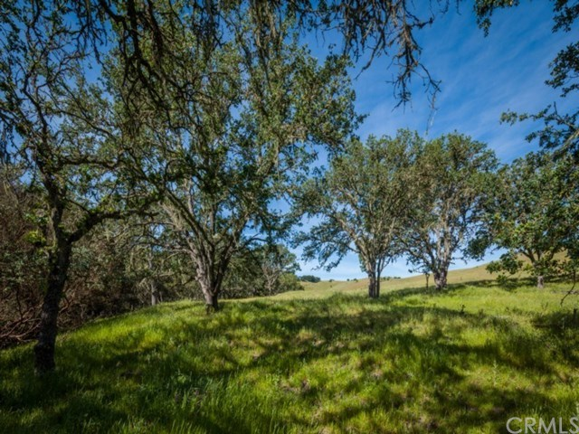 Off Market | 5330 Dana Lane Templeton, CA 93465 32