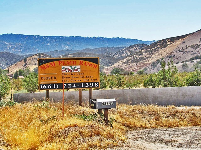 Off Market | 48745 3 Points Road Lake Hughes, CA 93532 19