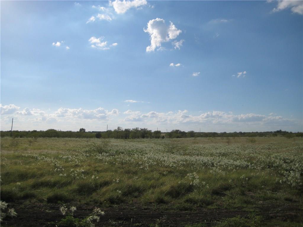 Active | Lot 13 NE CR 1060  Rice, TX 75155 0