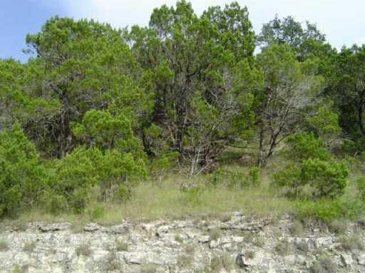 Sold Property | 9005 WESTERN TRL Lago Vista, TX 78645 0