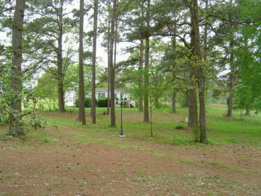 Sold Property | 10546 County Rd. 446  Other, TX 77868 7