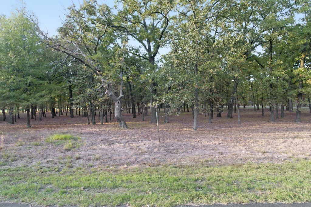 Active | G-36PR 5980  Yantis, Texas 75497 7