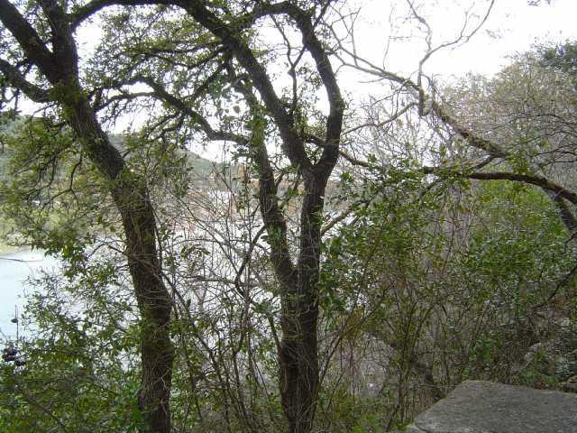 Sold Property | 11115 Lakeside DR Jonestown, TX 78645 10