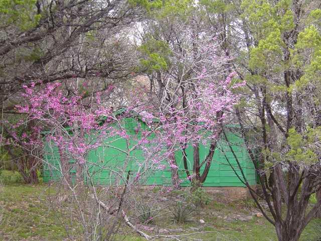 Sold Property | 11115 Lakeside DR Jonestown, TX 78645 20