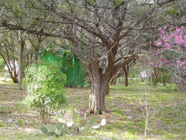 Sold Property | 11115 Lakeside DR Jonestown, TX 78645 21
