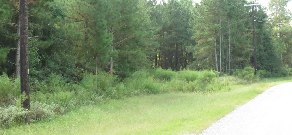 Active | TBD Grand View Trail Huntsville, Texas 77340 2