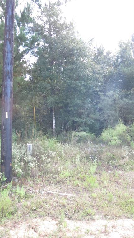 Active | TBD Grand View Trail Huntsville, Texas 77340 9
