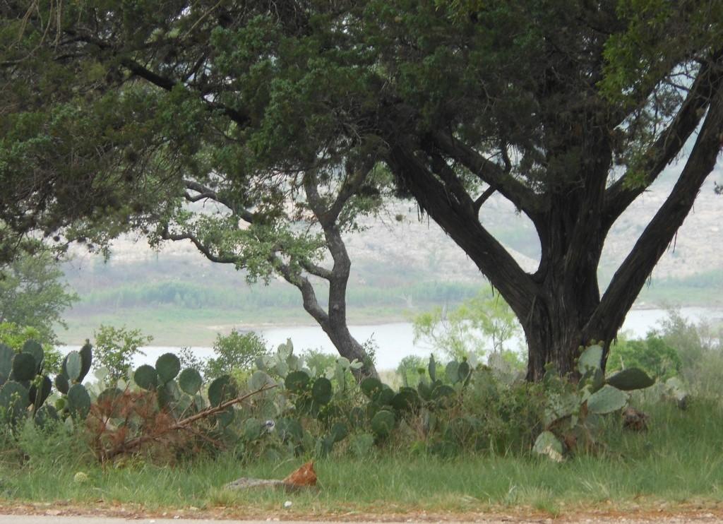 Sold Property | 2913 Patriot DR Lago Vista, TX 78645 24
