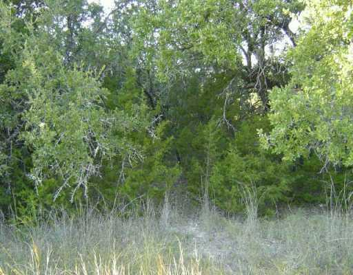 Sold Property | 21512 Paine AVE Lago Vista, TX 78645 0