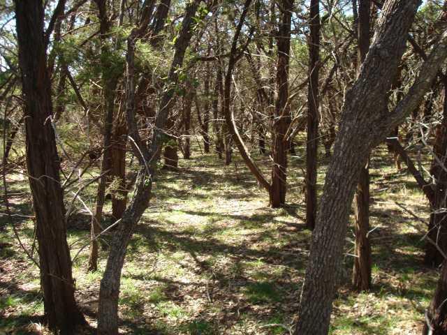 Withdrawn | 0 Ridgeline Road Leander, TX 78641 1