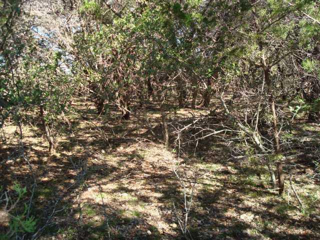 Withdrawn | 0 Ridgeline Road Leander, TX 78641 2