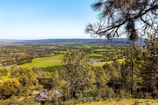 Active | 2745 Co Road 308  Elk Creek, CA 95939 10