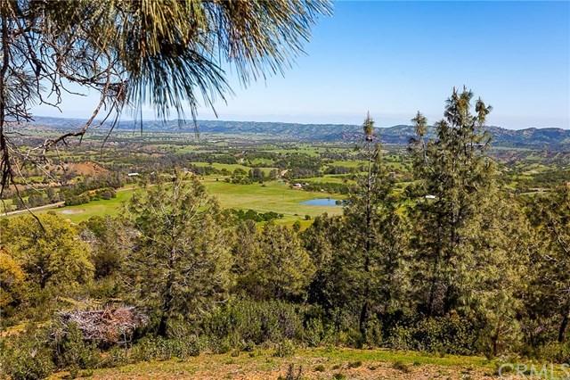 Active | 2745 Co Road 308  Elk Creek, CA 95939 11