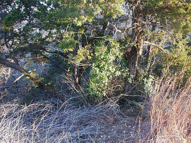 Sold Property | 9306 Running Brook CV Lago Vista, TX 78645 0