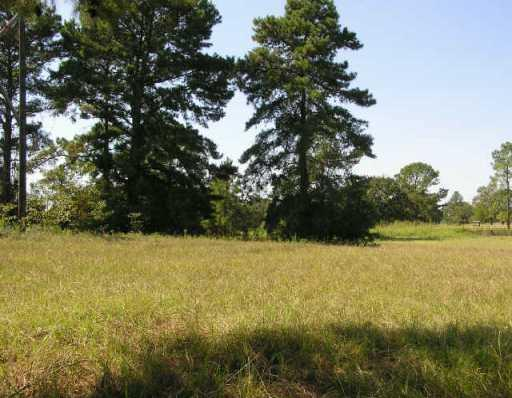 Sold Property | 10500 County Road 446  Other, TX 77868 0