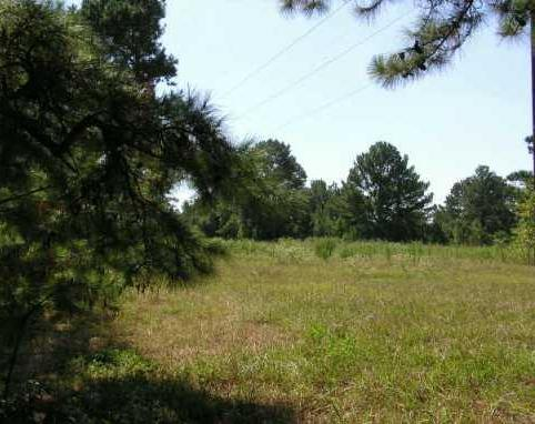 Sold Property | 10500 County Road 446  Other, TX 77868 1