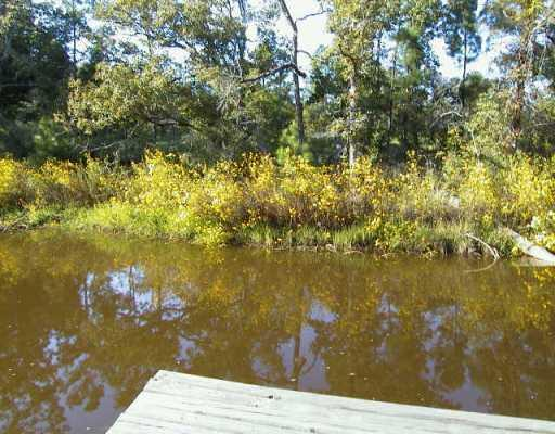 Sold Property | 10546 County Rd. 446  Other, TX 77868 0