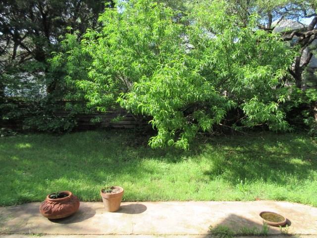 Sold Property | 1905 Continental PASS Cedar Park, TX 78613 20