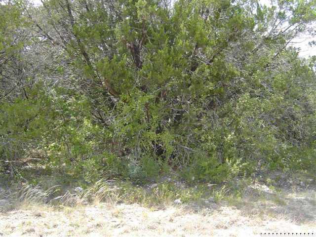 Sold Property | 21806 Redbird DR Lago Vista, TX 78645 0