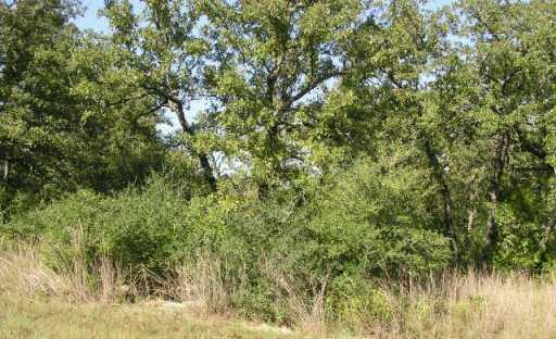 Sold Property | 3605 Roosevelt CV Lago Vista, TX 78645 0