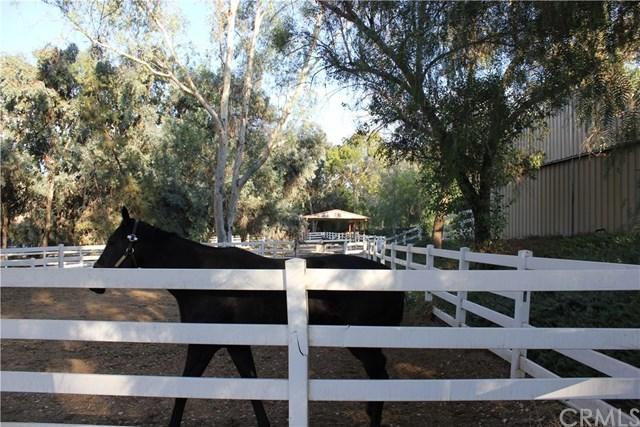 Active | 28741 San Timoteo Canyon Road Redlands, CA 92373 18