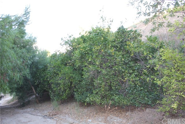 Active | 28741 San Timoteo Canyon Road Redlands, CA 92373 33