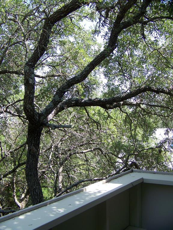 Sold Property | 2203 Doral DR Austin, TX 78746 23