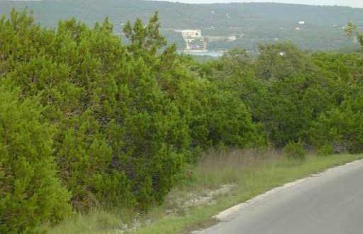 Sold Property | 103 REED PARK RD Jonestown, TX 78645 2