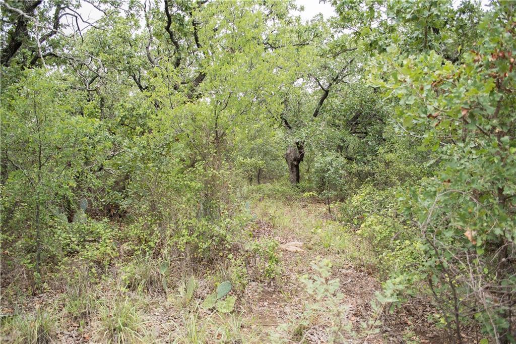 Active | A13 Valley Vista  Gordon, TX 76453 5
