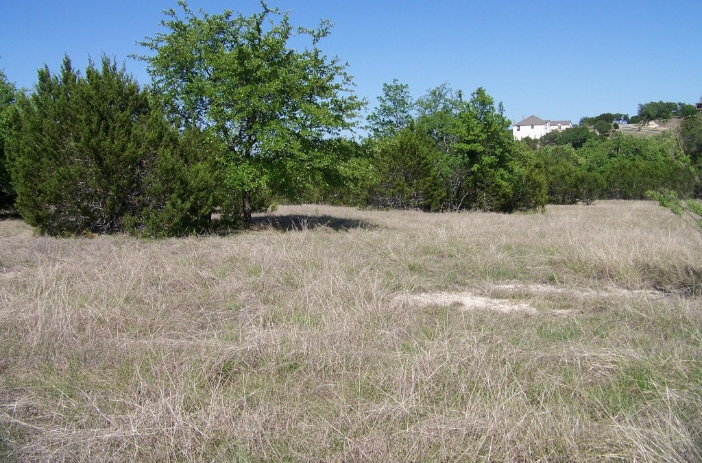 Sold Property | 285 Covered Bridge DR Driftwood, TX 78619 1