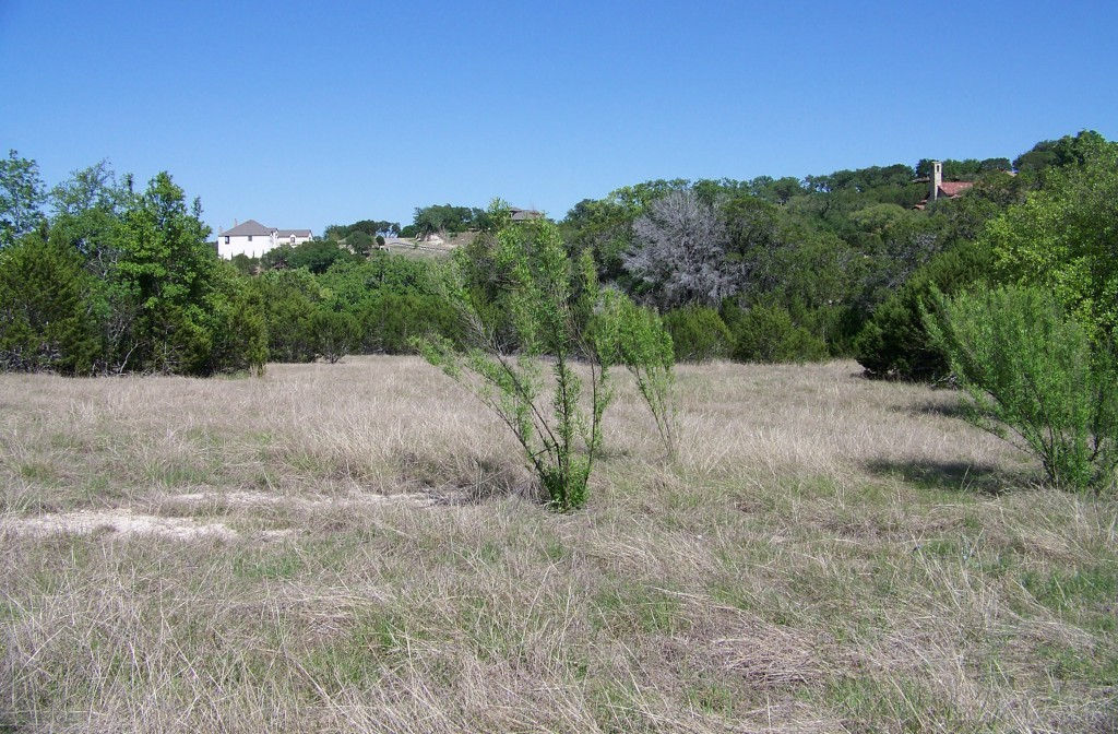 Sold Property | 285 Covered Bridge DR Driftwood, TX 78619 2